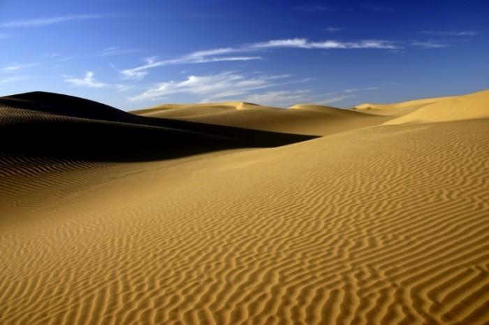 iStock 000003836410Medium 700x465 Пустыня   Desert