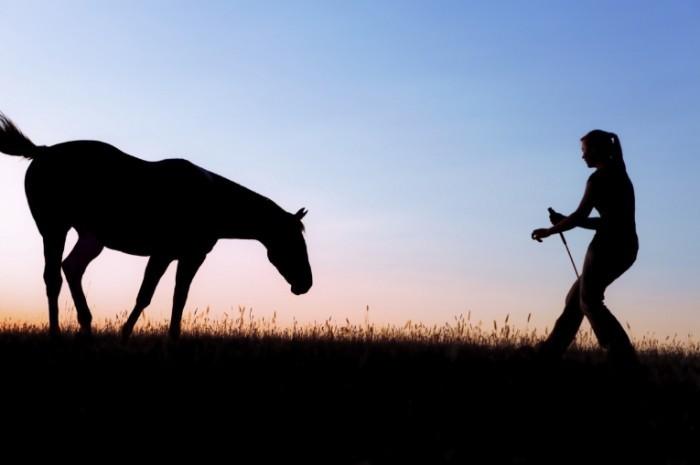 istock 000011957976medium 700x465 Лошадь и девушка   Horse and girl