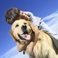 Мальчик с собакой - Boy with a Dog