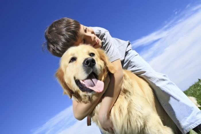 istock 000006883609large 700x465 Мальчик с собакой   Boy with a Dog