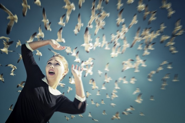 istock 000023936557large 700x467 Девушка с голубями   Girl with doves