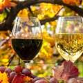 Белое и красное вино - White and red wine