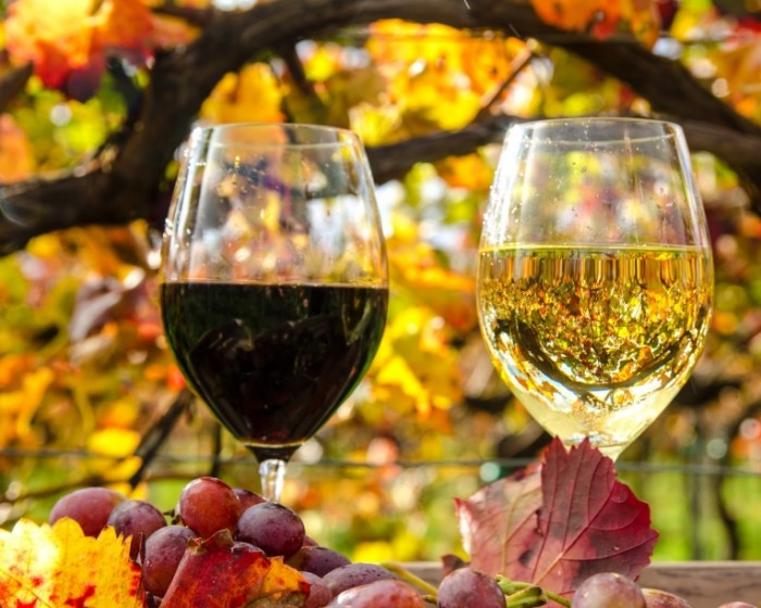 Dollarphotoclub 88649172 700x560 Белое и красное вино   White and red wine