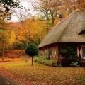 Осенний пейзаж с домом - Autumn landscape with a house