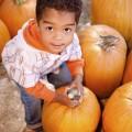 Мальчик с тыквой - Boy with pumpkin