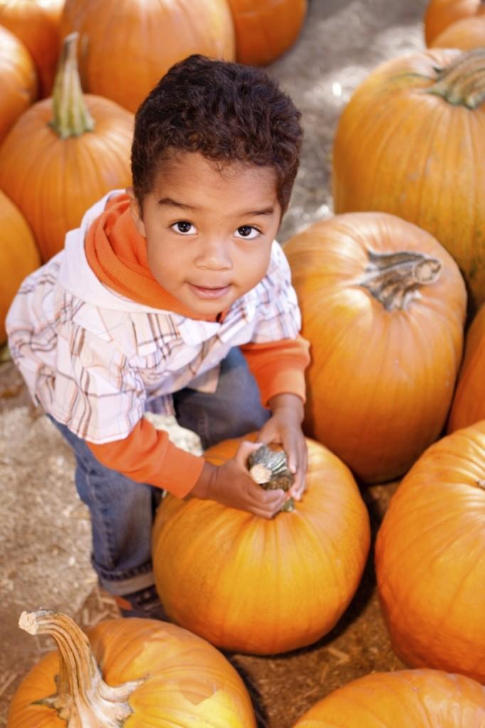 istock 000010929500medium1 682x1024 Мальчик с тыквой   Boy with pumpkin