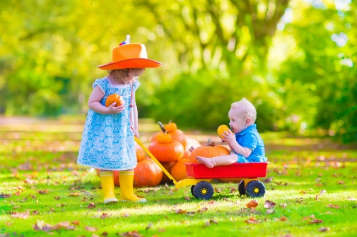 Dollarphotoclub 71328240 700x466 Дети с тыквой   Children with pumpkin