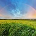 Радуга - Rainbow