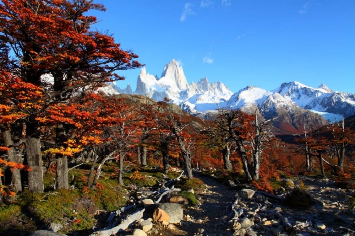 argentina patagonia beautiful nature landscape with mt. fitz roy as seen in los glaciares national park 700x466 Аргентина   Argentina