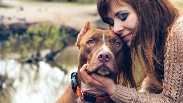 dog owner loyalty stock today tease 150616 da8bfd008fdbabfe02d17950b18da6f8 700x393 Девушка с собакой   Girl with dog