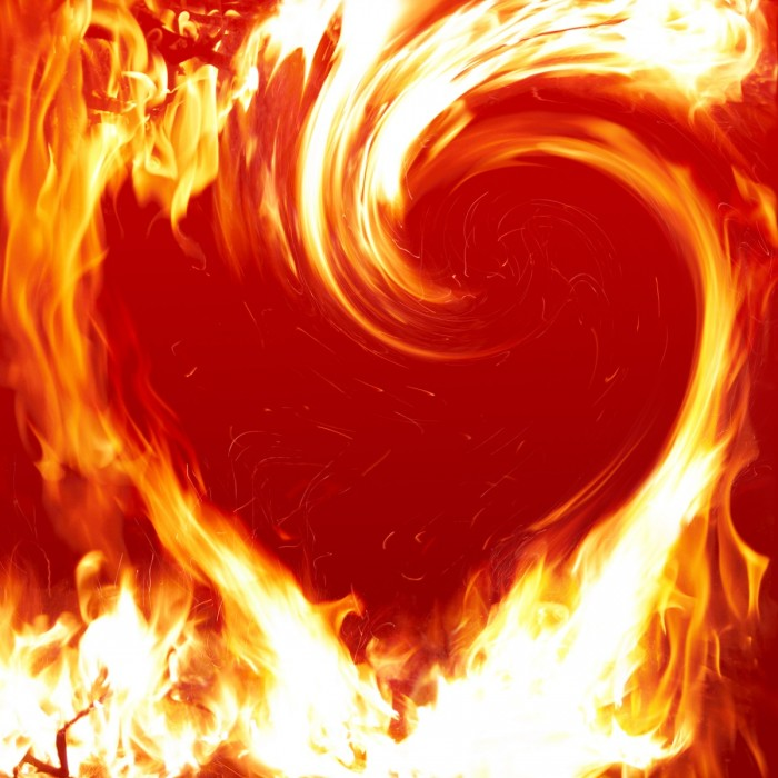 shutterstock 1621791 700x700 Сердце   Heart