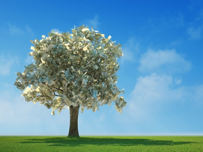shutterstock 33790039 700x524 Дерево с долларами   Tree with dollars