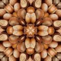 Nuts mosaic - Мозаика из орехов