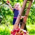 Ребенок в саду - Child in the garden