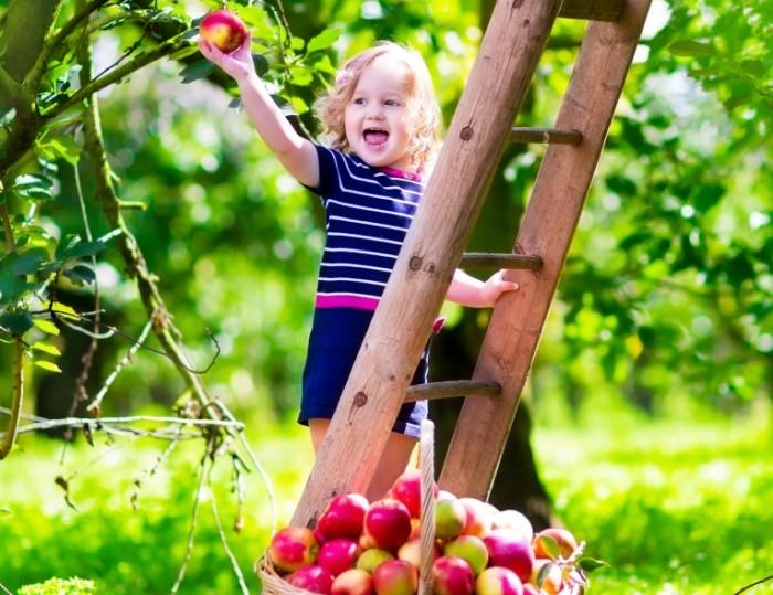 9b9fec8e15b5a7d 700x539 Ребенок в саду   Child in the garden