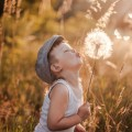 Мальчик с одуванчиком - Boy with dandelion