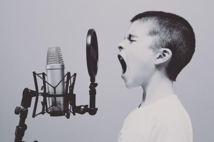 microphone 1209816 700x466 Microphone   Микрофон