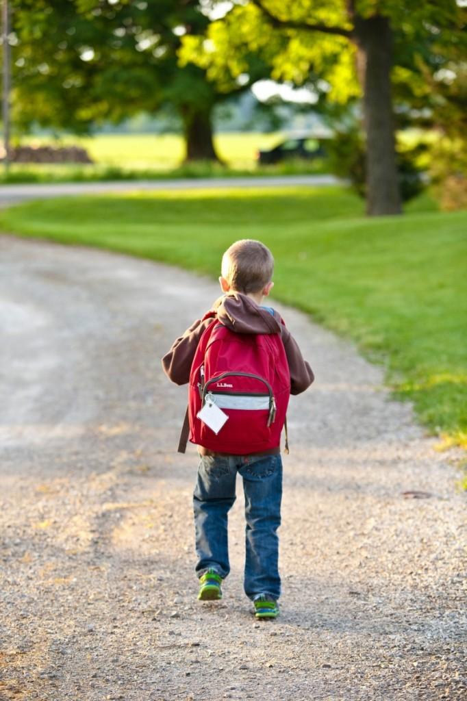 school 1634755 682x1024 Schoolboy   Школьник