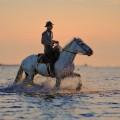 Cowboy on horseback - Ковбой на лошади