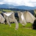 Постиранное белье - Wash clothes