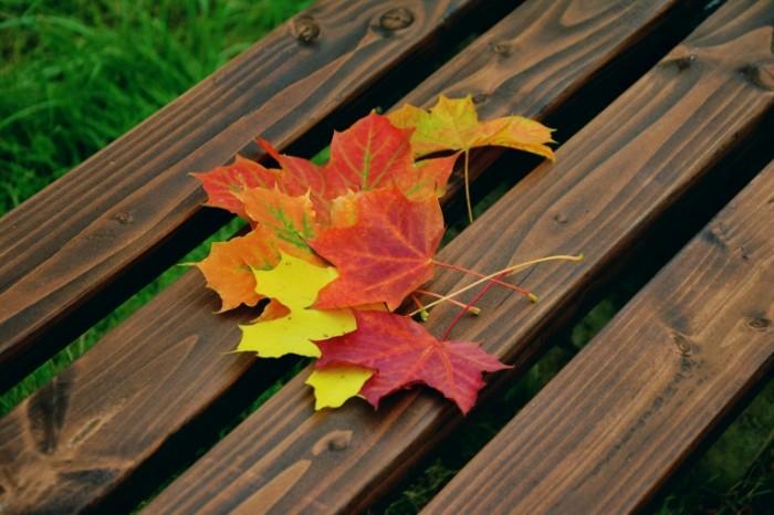 fall foliage 1740841 700x466 Осенние листья на скамье   Autumn leaves on the bench