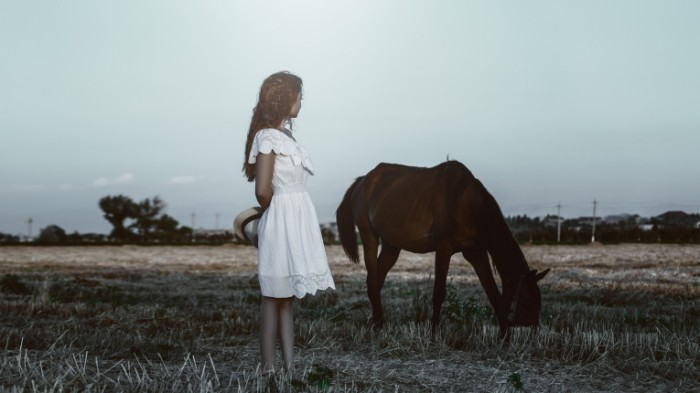 horse 1725253 700x393 Девушка с лошадью   Girl with horse