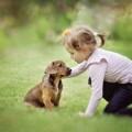 Девочка с щенком - Girl with puppy