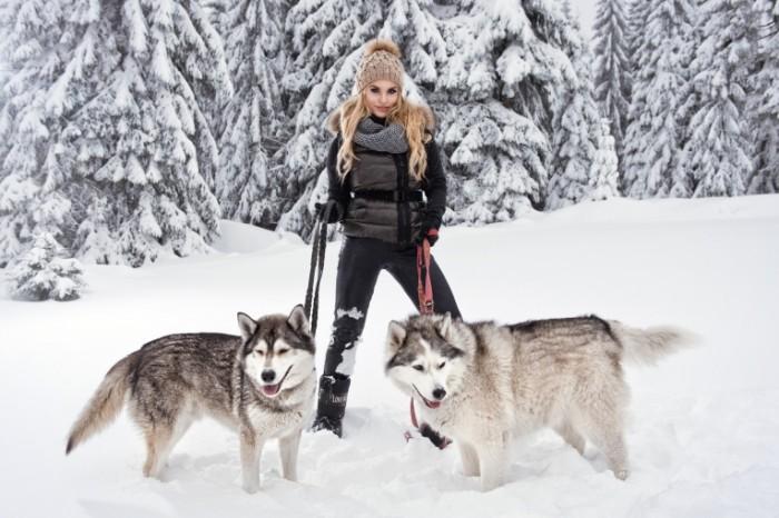 sneg devuska poza blondinka haski poroda sobaki 700x466 Girl with dogs in the winter forest   Девушка с собаками в зимнем лесу