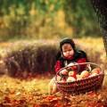 Ребенок с яблоками - Child with apples