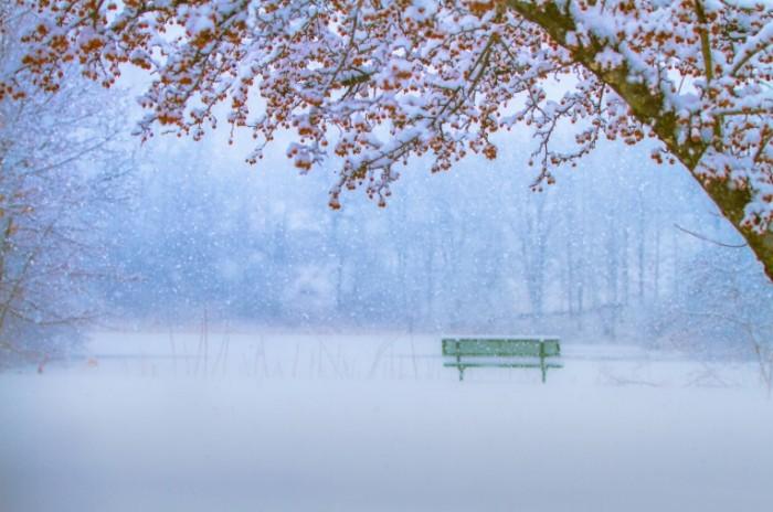 0e6d9c17b1902e1 700x464 Снегопад   Snowfall