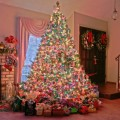 Новогодняя елка - Christmas tree