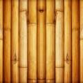 Бамбук - Bamboo