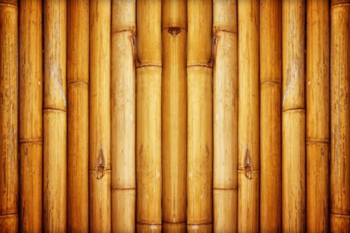 14853415465888836ab207d7.90603015 700x466 Бамбук   Bamboo