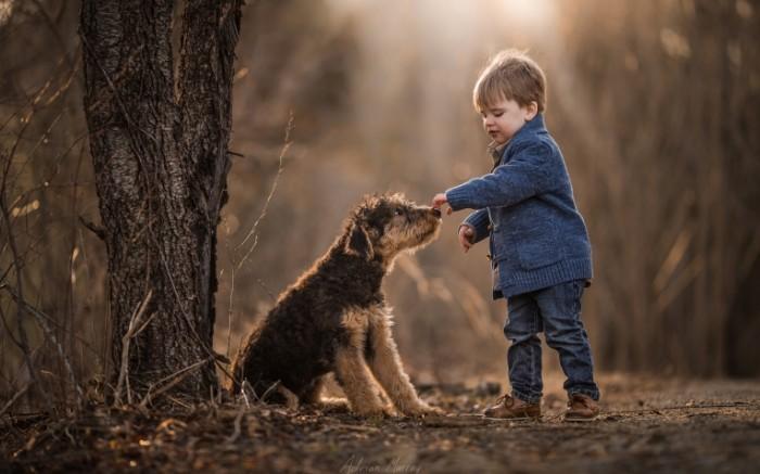 148498731258831bb0b3e609.89239720 700x437 Мальчик с собакой   Boy with a dog