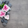 Камни и цветы - Stones and flowers