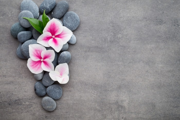 spa zen stones flower orchid 7609 700x466 Камни и цветы   Stones and flowers