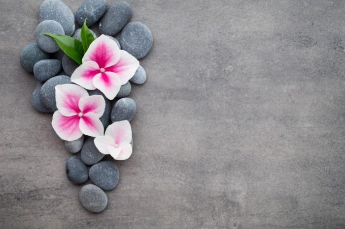 Открытки с цветами на камне