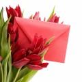 Тюльпаны с письмом - Tulips with letter