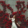 Девушка в белом платье - Girl in white dress