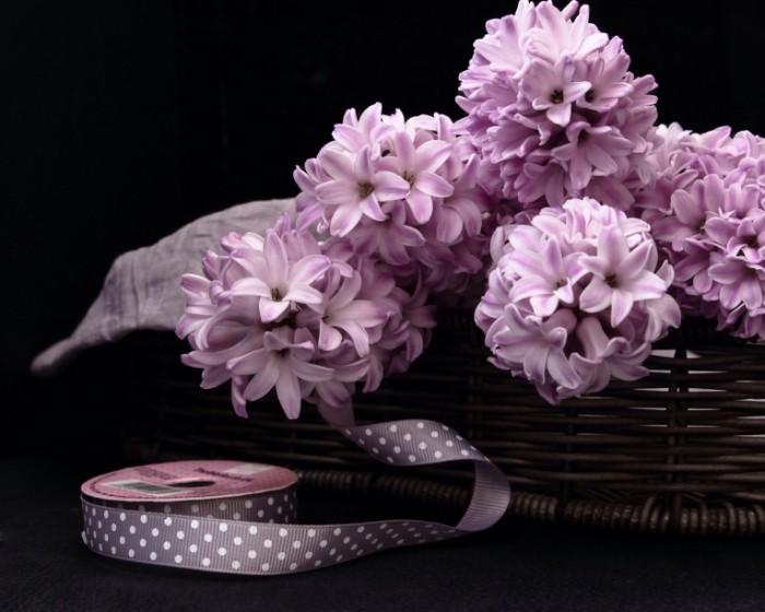 giacinty tesma korzinka 700x560 Корзина с цветами   Basket with flowers