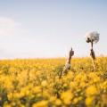 Люди цветы - People flowers