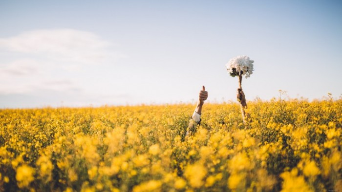 Lyudi tsvetyi People flowers 700x394 Люди цветы   People flowers