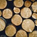 Бревна - Logs