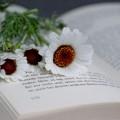 Книга и цветы - Book and flowers