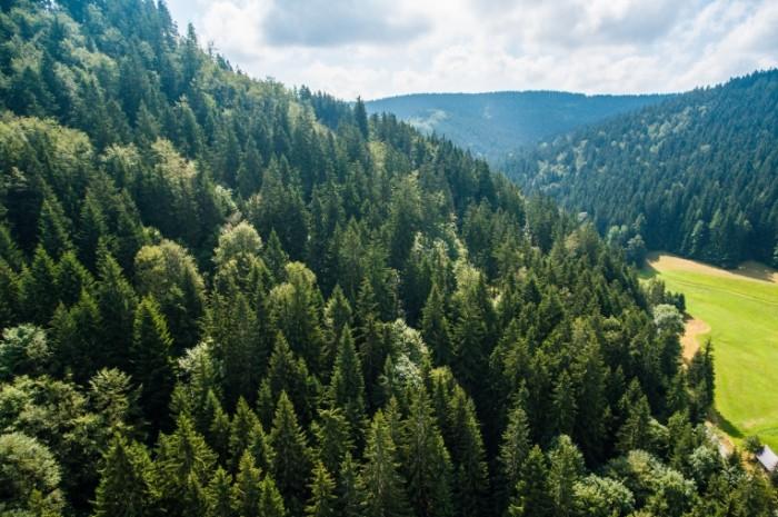 Peyzazh goryi Landscape mountains1 700x465 Пейзаж, горы   Landscape, mountains