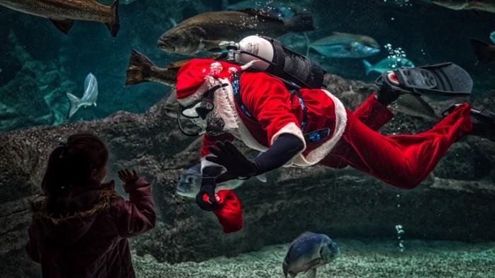 Санта   Santa