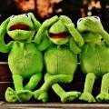 Кермит - Kermit
