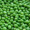 Зеленый горошек - Green pea