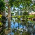 Отель в тропиках - Hotel in the tropics