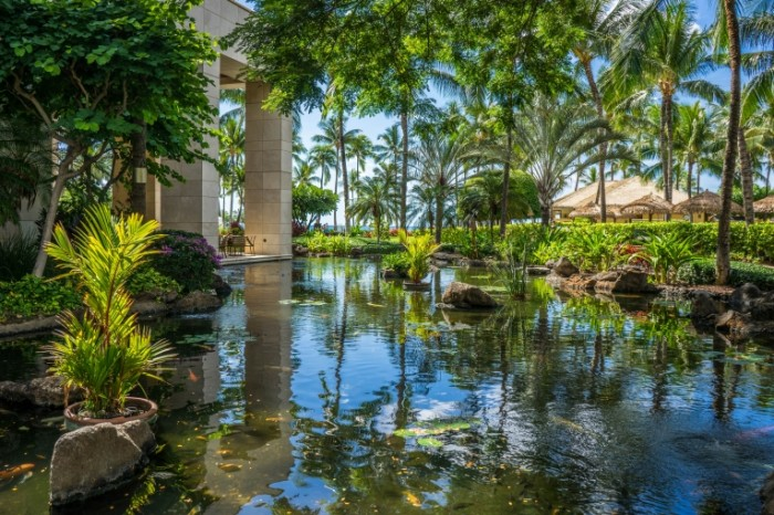 Otel v tropikah Hotel in the tropics 6888x4597 700x466 Отель в тропиках   Hotel in the tropics